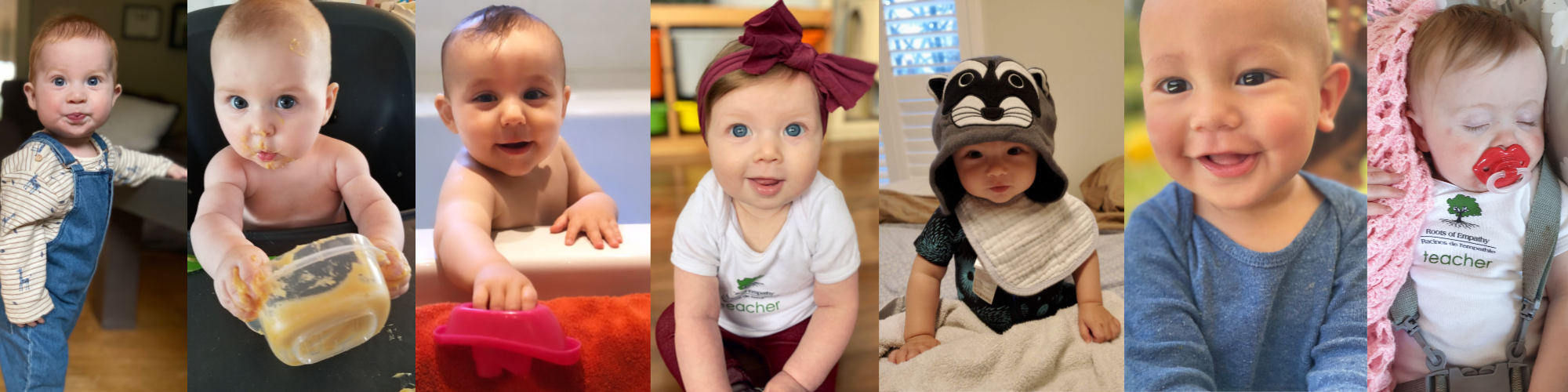 a row of pictures of 7 babies